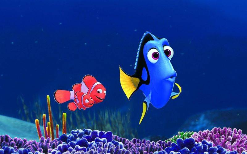 finding_dory_2016_we_all_different_and_we_need_to_respect_the_peculiarities_of_others_1_20190717033906.jpg